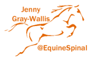 Jenny Gray-Wallis - Equine Spinal Therapist